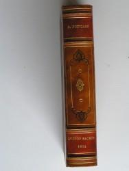 Raymond Poincaré - Au service de la France. Neuf années de souvenirs. Tome 4