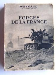 Général Maxime Weygand - Forces de la France